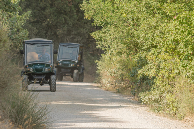 JeepTour_Gallery1